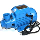goulds bf03s shallow well jet pump 1 2 hp manual